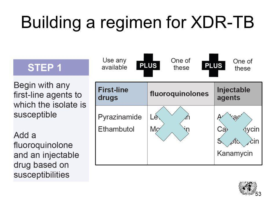53 Building a regimen for XDR-TB