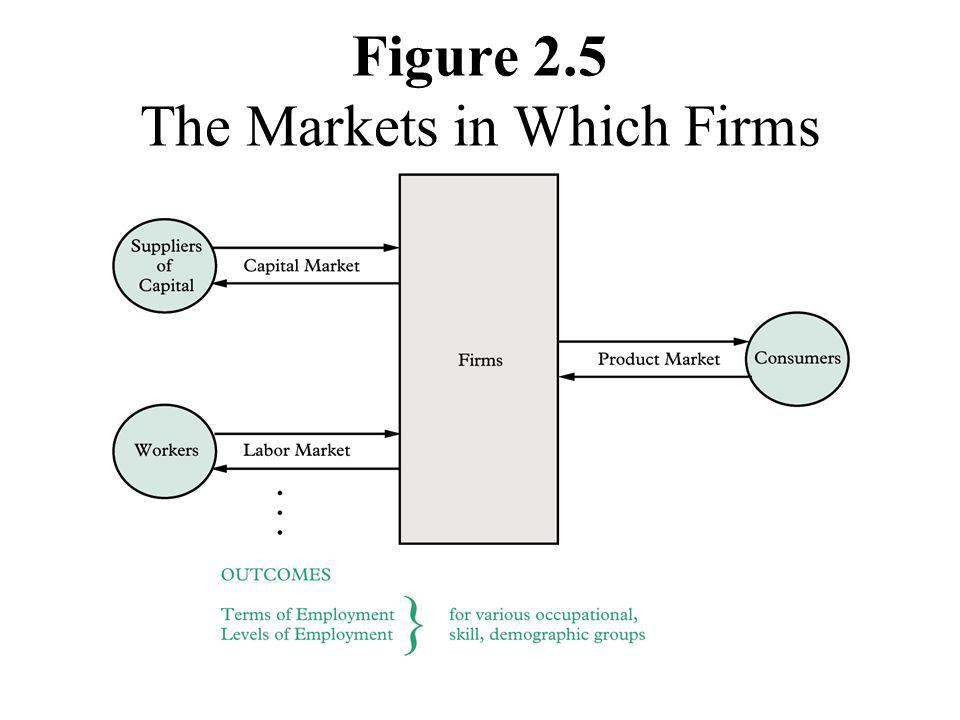 Figure 2.5 The Markets in Which Firms Must Operate