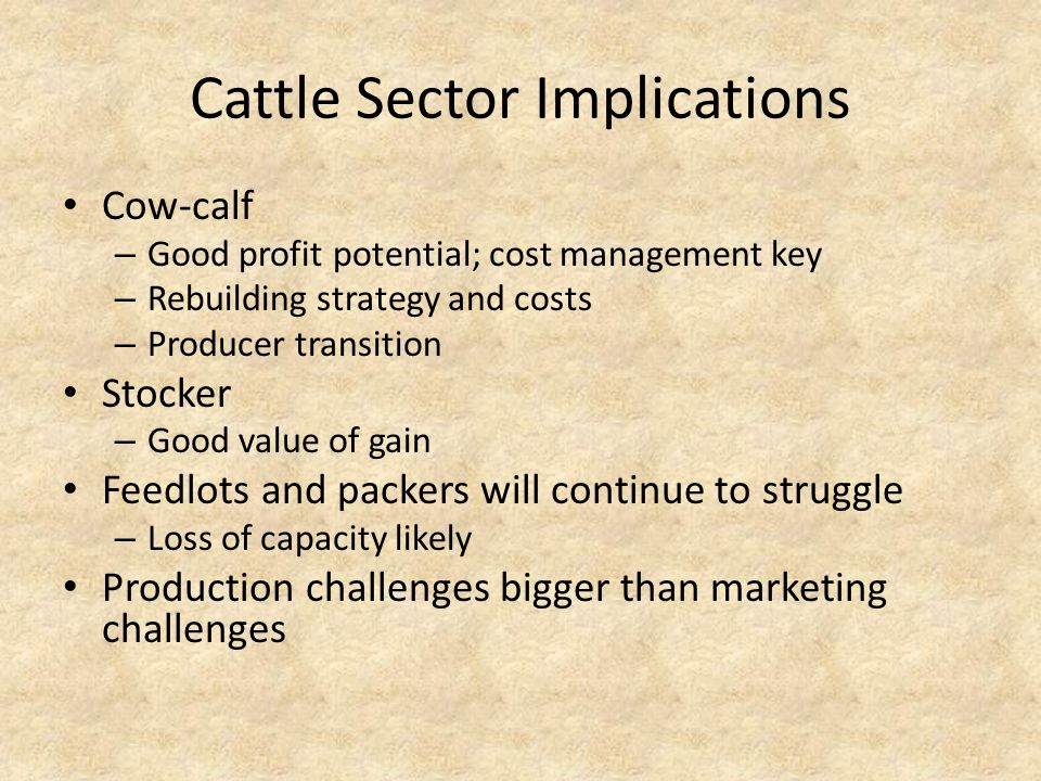 Cattle Sector Implications Cow-calf – Good profit potential; cost management key – Rebuilding strategy and costs – Producer transition Stocker – Good value of gain Feedlots and packers will continue to struggle – Loss of capacity likely Production challenges bigger than marketing challenges