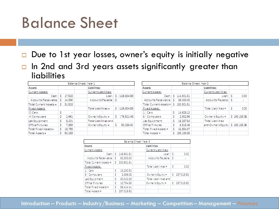 Balance Sheet Introduction – Products – Industry/Business – Marketing – Competition – Management – Finances Due to 1st year losses, owners equity is initially negative In 2nd and 3rd years assets significantly greater than liabilities