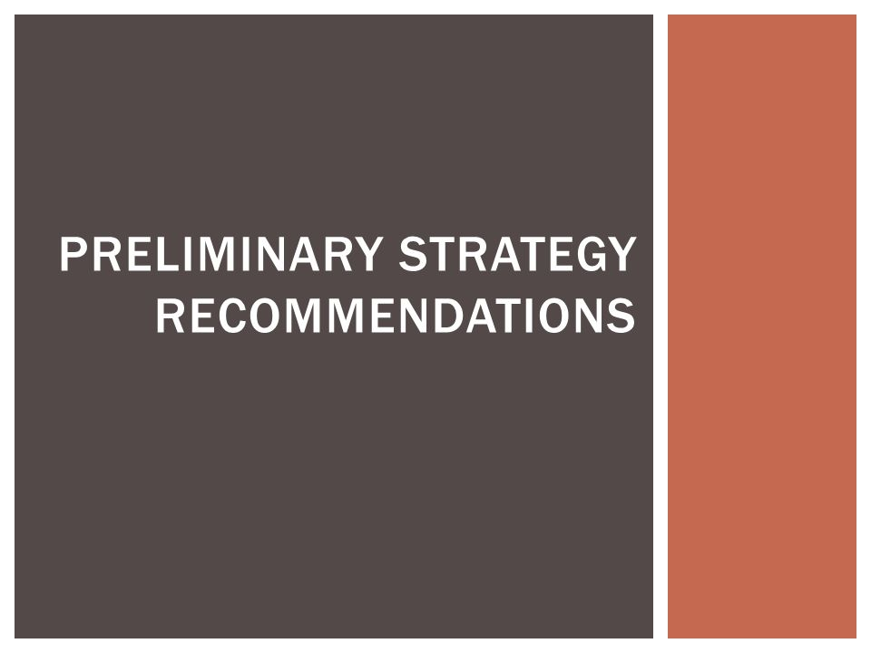 PRELIMINARY STRATEGY RECOMMENDATIONS