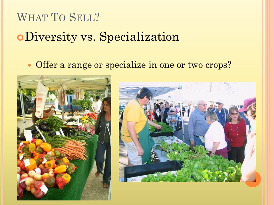 Diversity vs. Specialization Offer a range or specialize in one or two crops