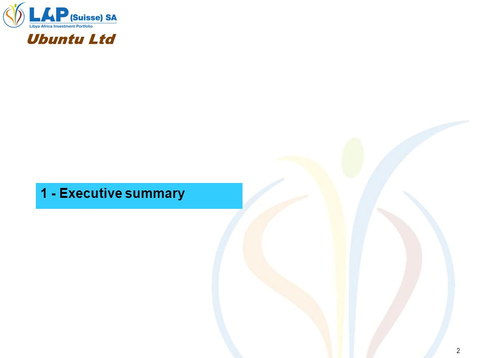 2 1 - Executive summary
