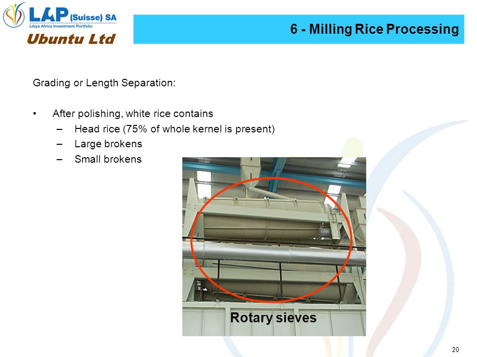 20 6 - Milling Rice Processing Grading or Length Separation: After polishing, white rice contains –Head rice (75% of whole kernel is present) –Large brokens –Small brokens Rotary sieves