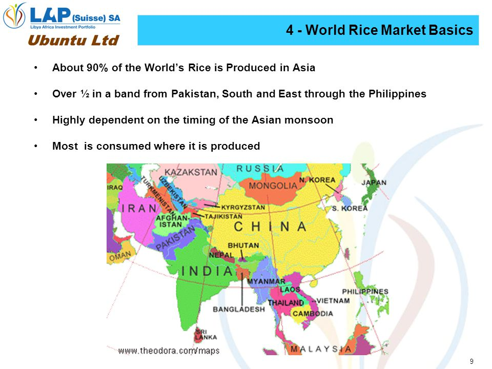 9 About 90% of the Worlds Rice is Produced in Asia Over ½ in a band from Pakistan, South and East through the Philippines Highly dependent on the timing of the Asian monsoon Most is consumed where it is produced