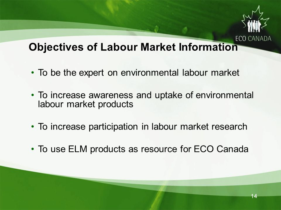 14 Objectives of Labour Market Information To be the expert on environmental labour market To increase awareness and uptake of environmental labour market products To increase participation in labour market research To use ELM products as resource for ECO Canada