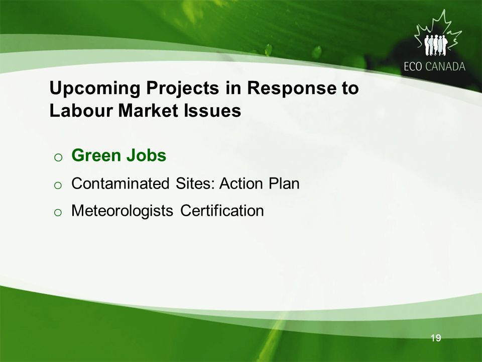 o Green Jobs o Contaminated Sites: Action Plan o Meteorologists Certification Projects in Response to Upcoming Projects in Response to Labour Market Issues 19