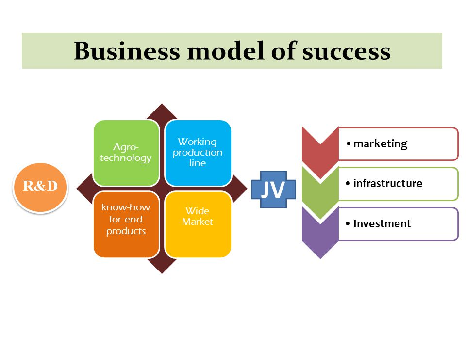 JV marketinginfrastructureInvestment Agro- technology Working production line know-how for end products Wide Market Business model of success