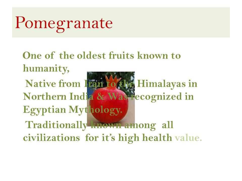 Pomegranate One of the oldest fruits known to humanity, Native from Iran to the Himalayas in Northern India & Was recognized in Egyptian Mythology.