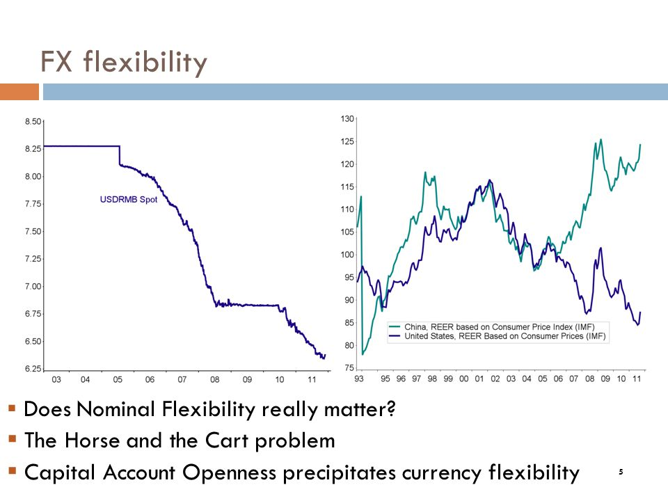 5 FX flexibility Does Nominal Flexibility really matter.