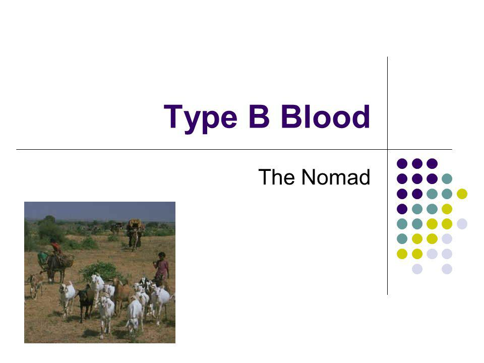 Type B Blood The Nomad