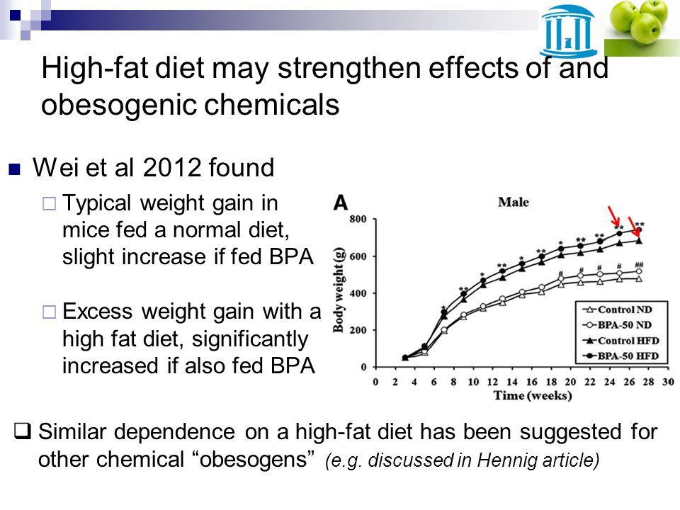High-fat diet may strengthen effects of and obesogenic chemicals Wei et al 2012 found Typical weight gain in mice fed a normal diet, slight increase if fed BPA Excess weight gain with a high fat diet, significantly increased if also fed BPA Similar dependence on a high-fat diet has been suggested for other chemical obesogens (e.g.