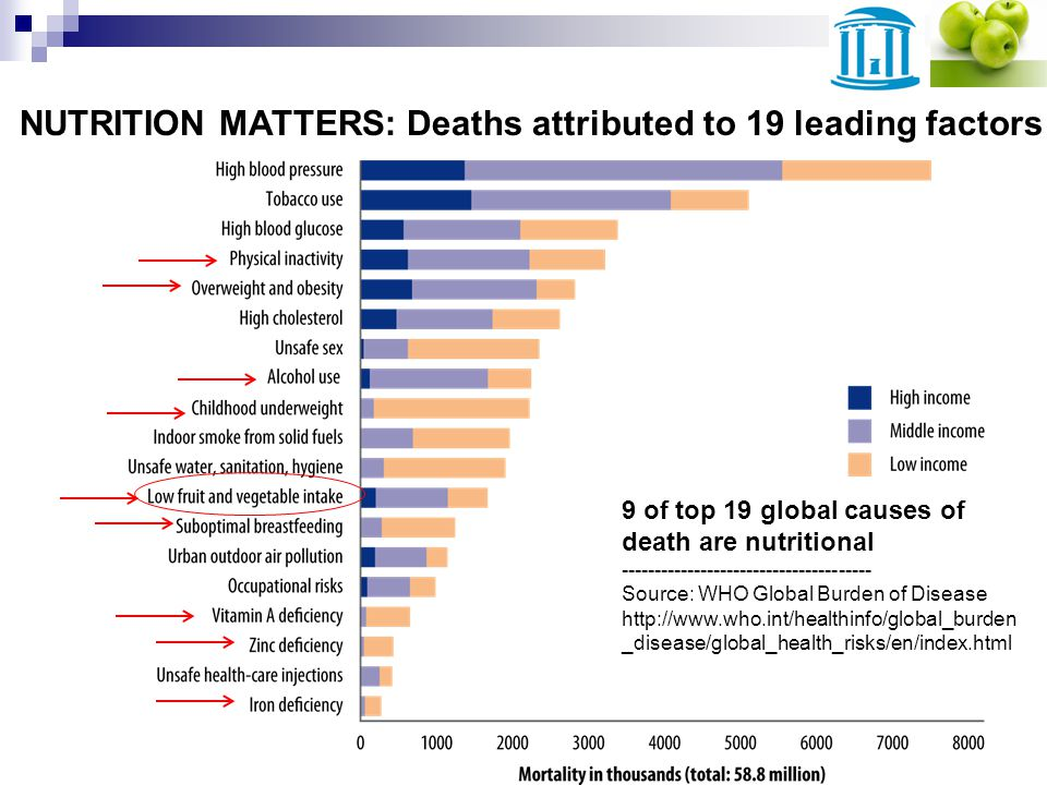 NUTRITION MATTERS: Deaths attributed to 19 leading factors 9 of top 19 global causes of death are nutritional -------------------------------------- Source: WHO Global Burden of Disease http://www.who.int/healthinfo/global_burden _disease/global_health_risks/en/index.html