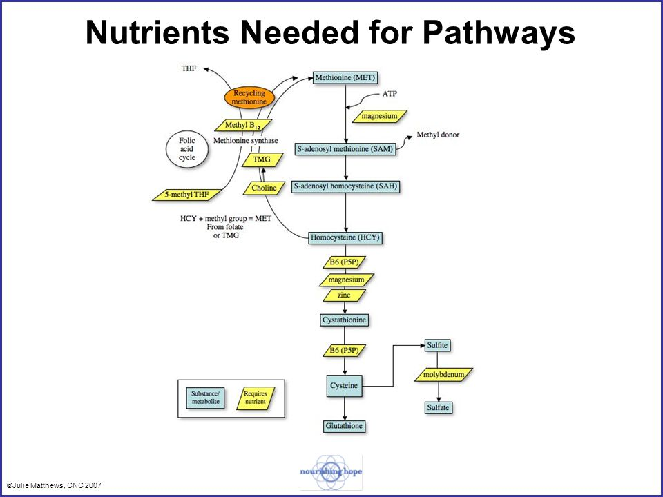 ©Julie Matthews, CNC 2007 Nutrients Needed for Pathways