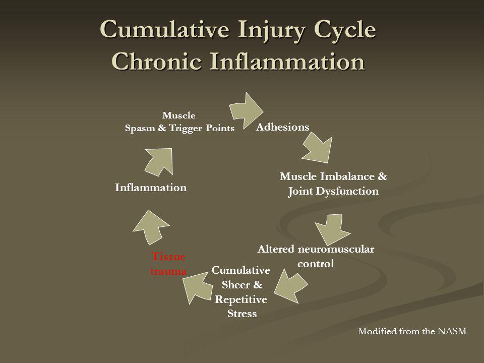 Cumulative Injury Cycle Chronic Inflammation Adhesions Altered neuromuscular control Cumulative Sheer & Repetitive Stress Muscle Imbalance & Joint Dysfunction Tissue trauma Inflammation Muscle Spasm & Trigger Points Modified from the NASM