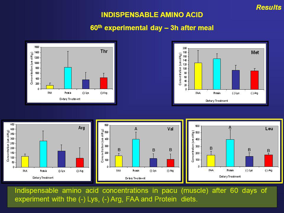 Results INDISPENSABLE AMINO ACID 60 th experimental day – 3h after meal A B B B A B B B Indispensable amino acid concentrations in pacu (muscle) after 60 days of experiment with the (-) Lys, (-) Arg, FAA and Protein diets.