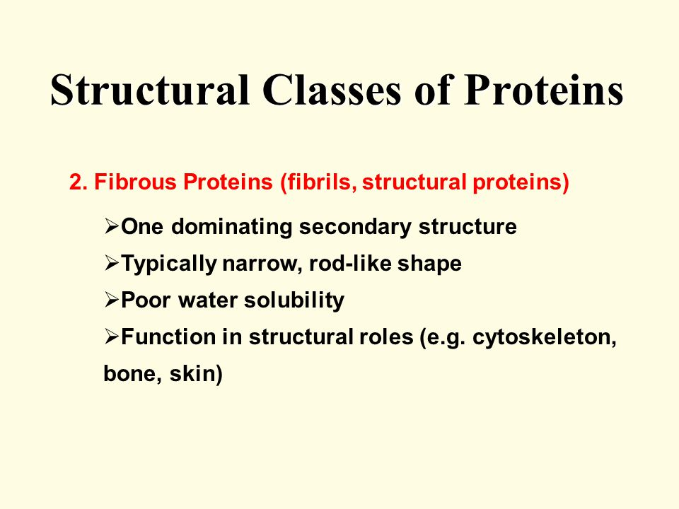 Structural Classes of Proteins 2.