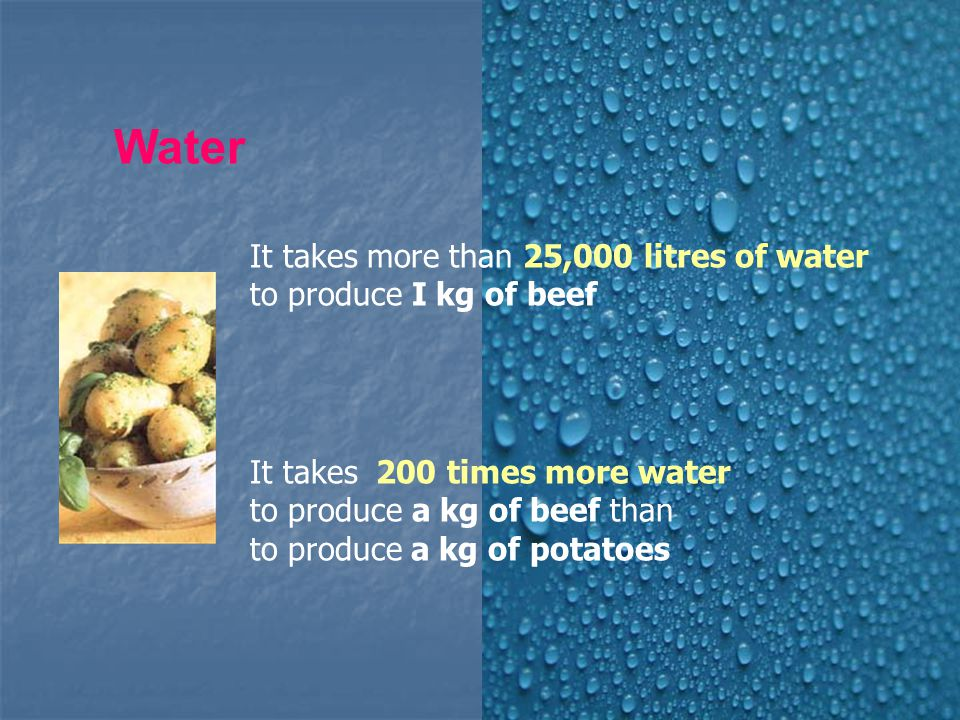 Water It takes more than 25,000 litres of water to produce I kg of beef It takes 200 times more water to produce a kg of beef than to produce a kg of potatoes