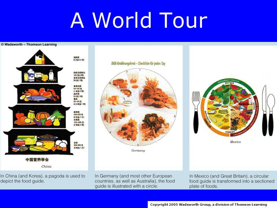 A World Tour Copyright 2005 Wadsworth Group, a division of Thomson Learning