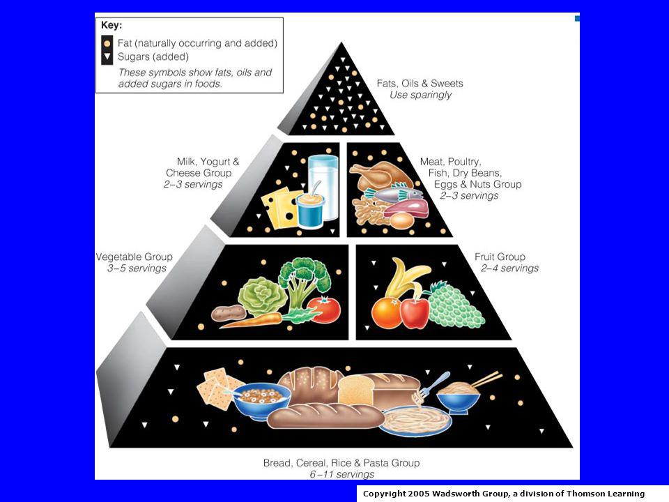 Daily Food Guide Food Guide Pyramid Copyright 2005 Wadsworth Group, a division of Thomson Learning