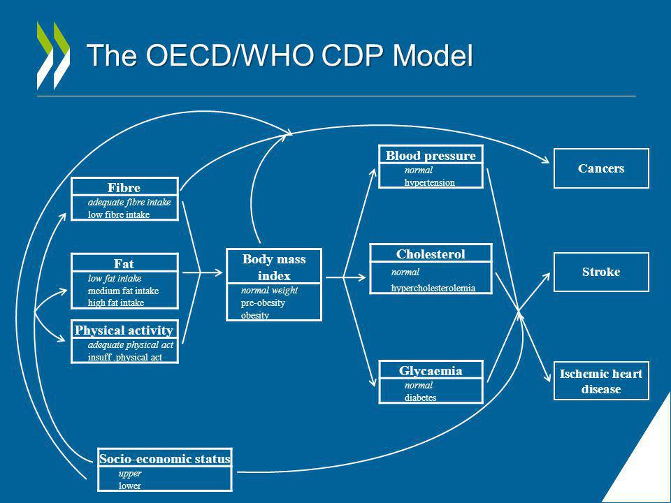 The OECD/WHO CDP Model Physical activity adequate physical act insuff.physical act Body mass index normal weight pre-obesity obesity Blood pressure normal hypertension Cholesterol normal hypercholesterolemia Glycaemia normal diabetes Cancers Stroke Ischemic heart disease Fat low fat intake medium fat intake high fat intake Fibre adequate fibre intake low fibre intake Socio-economic status upper lower