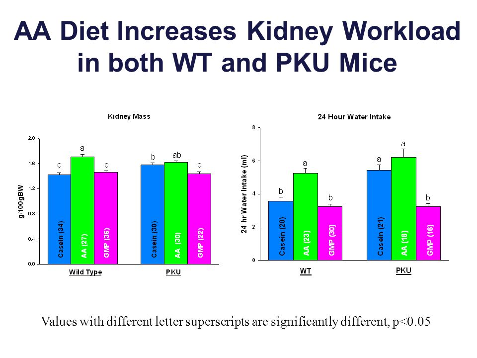 AA Diet Increases Kidney Workload in both WT and PKU Mice Values with different letter superscripts are significantly different, p<0.05