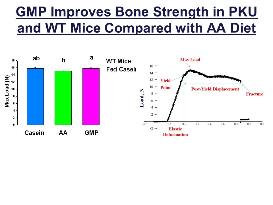 GMP Improves Bone Strength in PKU and WT Mice Compared with AA Diet