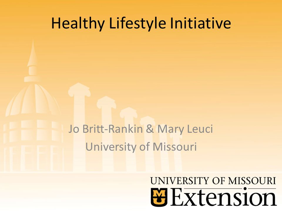 Healthy Lifestyle Initiative Jo Britt-Rankin & Mary Leuci University of Missouri