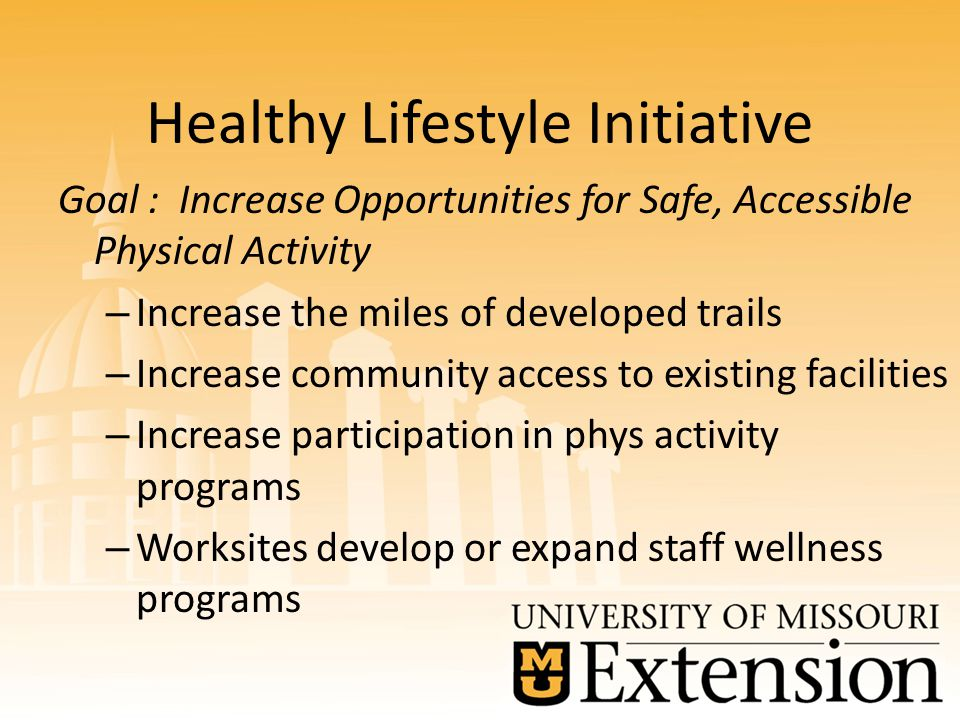 Healthy Lifestyle Initiative Goal : Increase Opportunities for Safe, Accessible Physical Activity – Increase the miles of developed trails – Increase community access to existing facilities – Increase participation in phys activity programs – Worksites develop or expand staff wellness programs