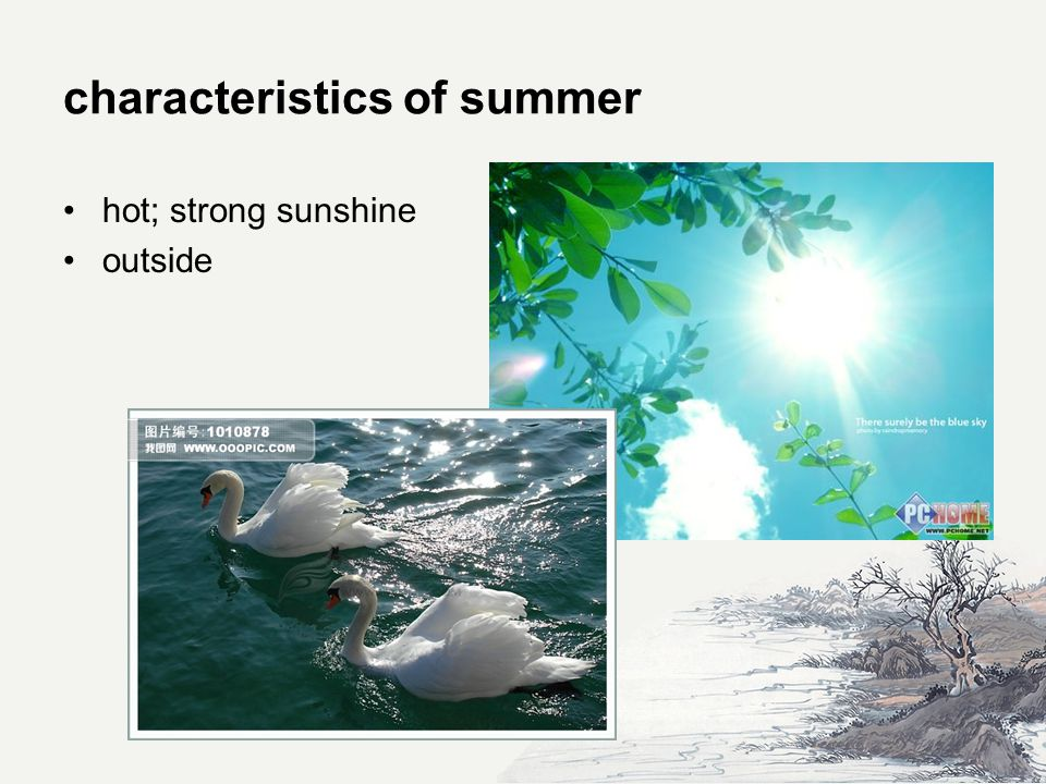 characteristics of summer hot; strong sunshine outside