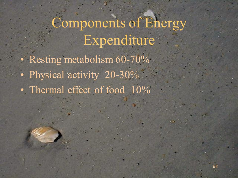 68 Components of Energy Expenditure Resting metabolism60-70% Physical activity 20-30% Thermal effect of food 10%
