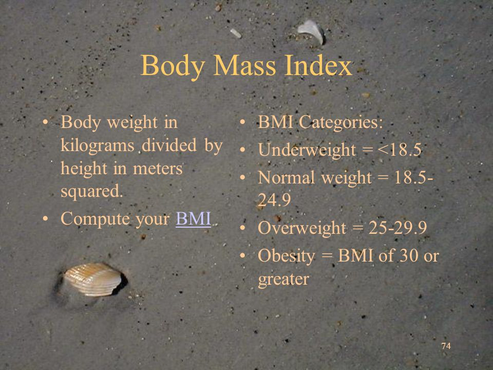 74 Body Mass Index Body weight in kilograms divided by height in meters squared.