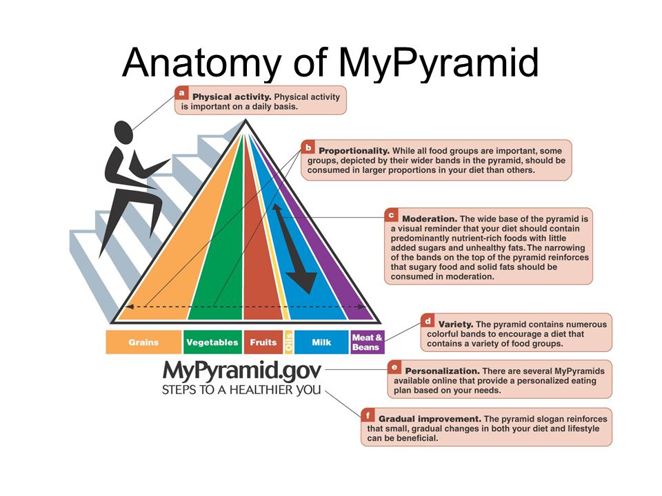 Anatomy of MyPyramid