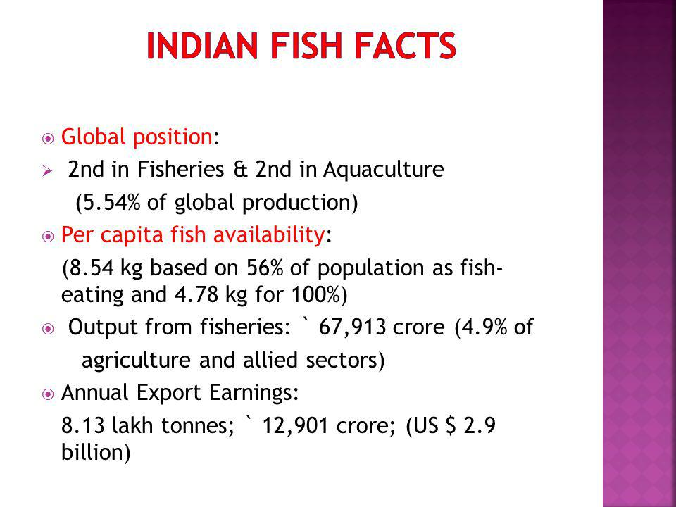 Global position: 2nd in Fisheries & 2nd in Aquaculture (5.54% of global production) Per capita fish availability: (8.54 kg based on 56% of population as fish- eating and 4.78 kg for 100%) Output from fisheries: ` 67,913 crore (4.9% of agriculture and allied sectors) Annual Export Earnings: 8.13 lakh tonnes; ` 12,901 crore; (US $ 2.9 billion)