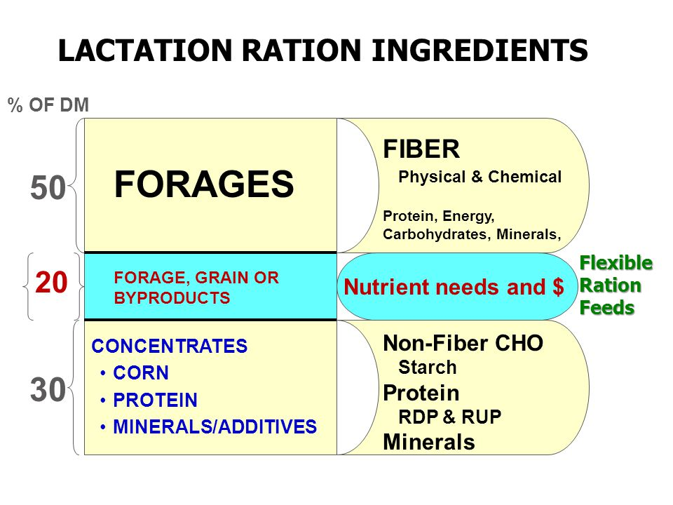 LACTATION RATION INGREDIENTS FORAGES FORAGE, GRAIN OR BYPRODUCTS CONCENTRATES CORN PROTEIN MINERALS/ADDITIVES 50 30 % OF DM 20 FIBER Physical & Chemical Protein, Energy, Carbohydrates, Minerals, Non-Fiber CHO Starch Protein RDP & RUP Minerals Nutrient needs and $ Flexible Ration Feeds