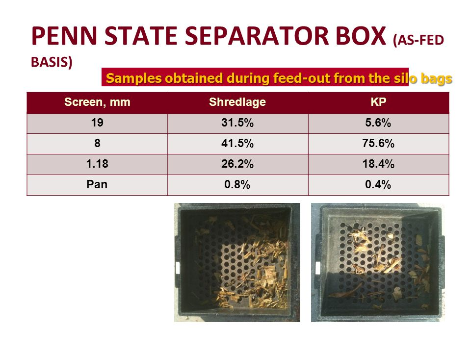 Screen, mmShredlageKP 1931.5%5.6% 841.5%75.6% 1.1826.2%18.4% Pan0.8%0.4% PENN STATE SEPARATOR BOX (AS-FED BASIS) Samples obtained during feed-out from the silo bags