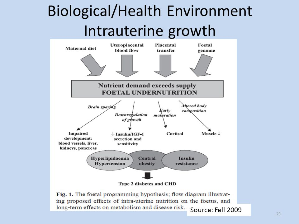 Biological/Health Environment Intrauterine growth 21 Source: Fall 2009