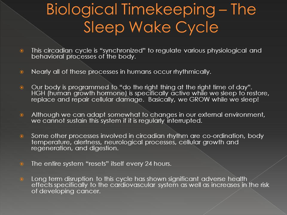 This circadian cycle is synchronized to regulate various physiological and behavioral processes of the body.