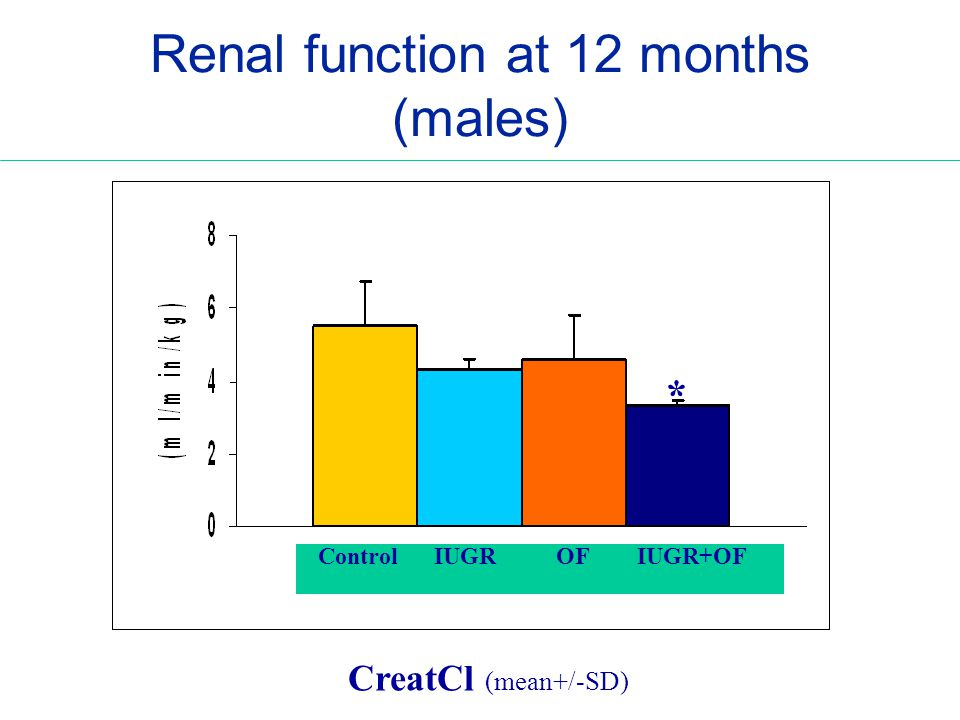 Renal function at 12 months (males) Control IUGR OF IUGR+OF * CreatCl (mean+/-SD)