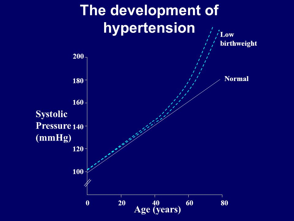 The development of hypertension 204060800 120 100 140 160 180 200 || Systolic Pressure (mmHg) Age (years) Low birthweight Normal