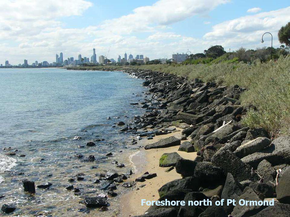 Foreshore north of Pt Ormond