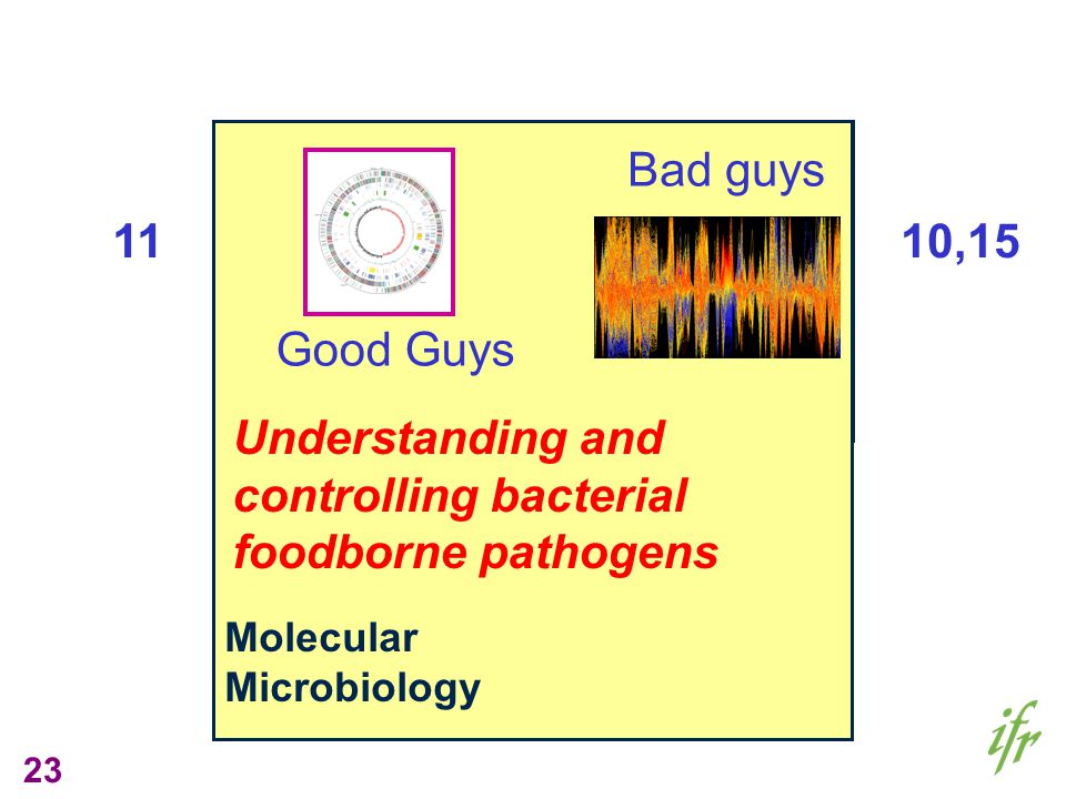 23 Gut Biology Nutrition, Diet & Health Molecular Microbiology Understanding and controlling bacterial foodborne pathogens Good Guys 11 Bad guys 10,15