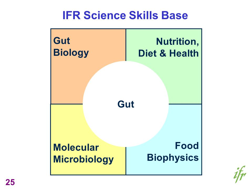 25 Gut Biology Nutrition, Diet & Health Molecular Microbiology Food Biophysics Gut IFR Science Skills Base