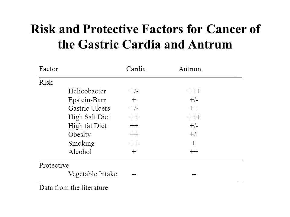 Factor Cardia Antrum Risk Helicobacter +/- +++ Epstein-Barr + +/- Gastric Ulcers +/- ++ High Salt Diet ++ +++ High fat Diet ++ +/- Obesity ++ +/- Smoking ++ + Alcohol + ++ Protective Vegetable Intake -- -- Data from the literature Risk and Protective Factors for Cancer of the Gastric Cardia and Antrum