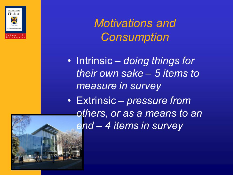 Motivations and Consumption Intrinsic – doing things for their own sake – 5 items to measure in survey Extrinsic – pressure from others, or as a means to an end – 4 items in survey