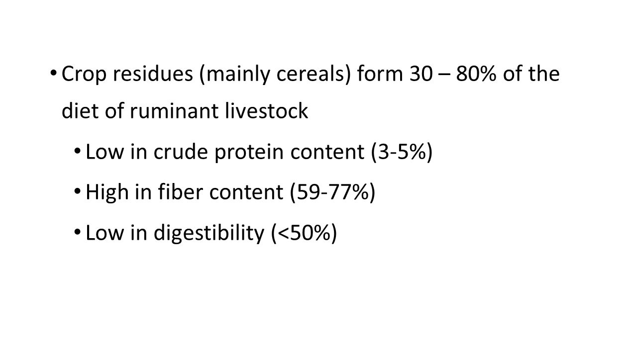 Crop residues (mainly cereals) form 30 – 80% of the diet of ruminant livestock Low in crude protein content (3-5%) High in fiber content (59-77%) Low in digestibility (<50%)