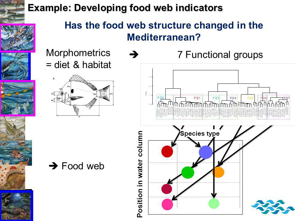 Example: Developing food web indicators Has the food web structure changed in the Mediterranean.