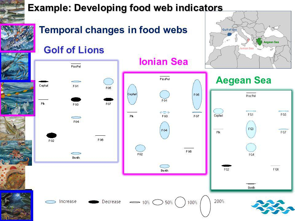 Temporal changes in food webs Golf of Lions Ionian Sea Aegean Sea Example: Developing food web indicators