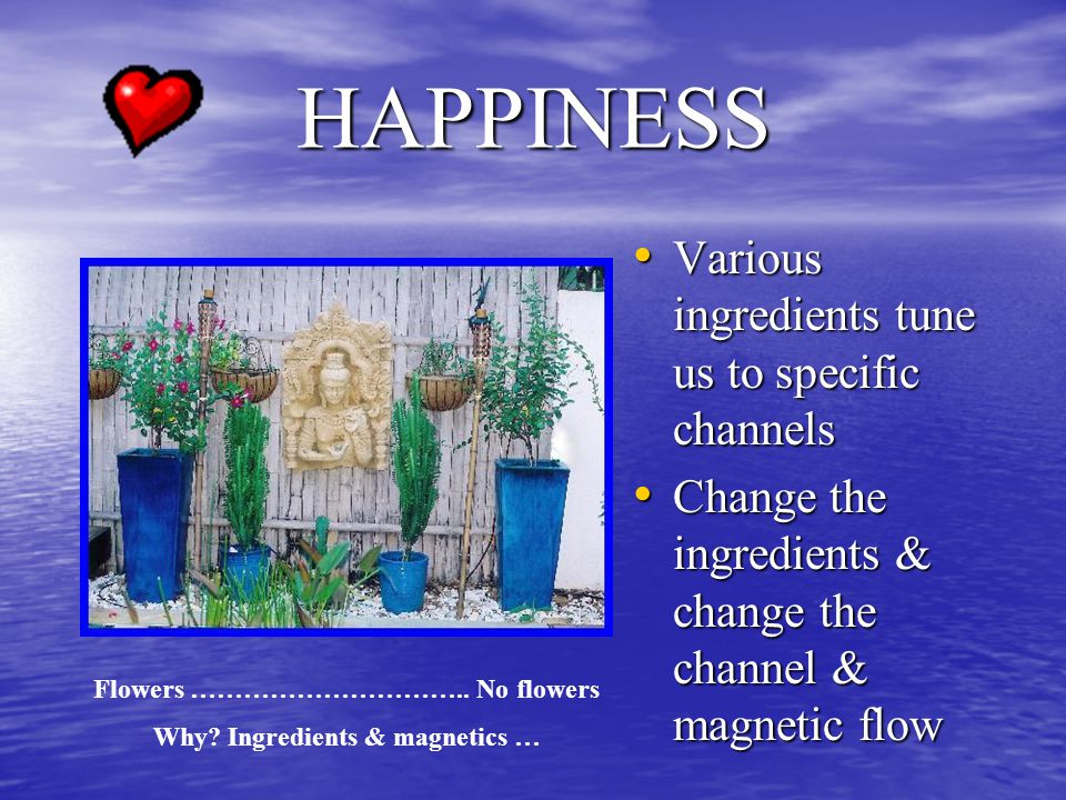 HAPPINESS Various ingredients tune us to specific channels Various ingredients tune us to specific channels Change the ingredients & change the channel & magnetic flow Change the ingredients & change the channel & magnetic flow Flowers …………………………..