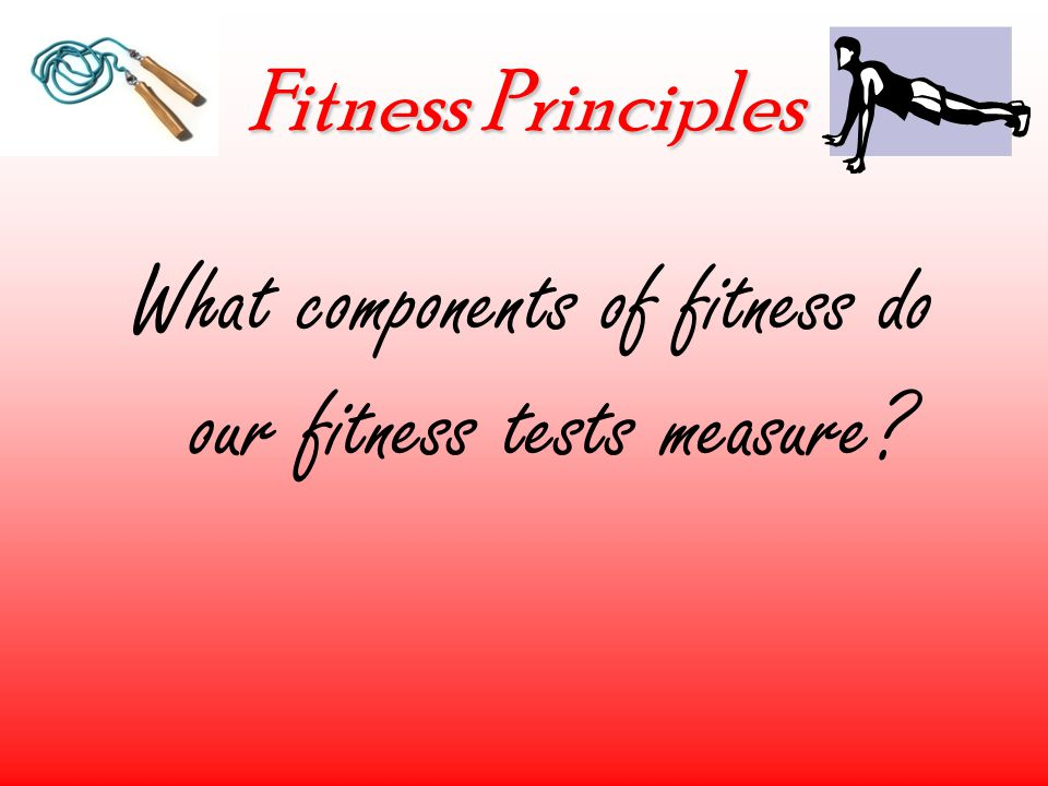 Fitness Principles What components of fitness do our fitness tests measure